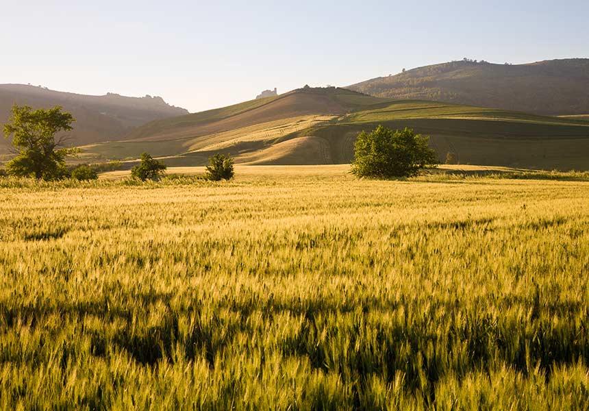 Chiaramonte Gulfi Sicily