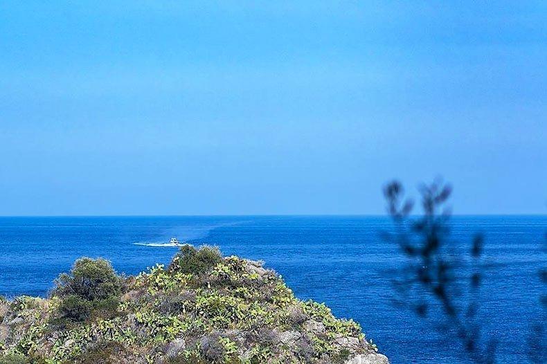mazzaro-seaview