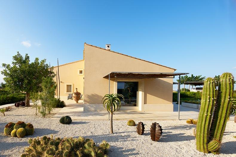 passo-degli-aironi-cactus